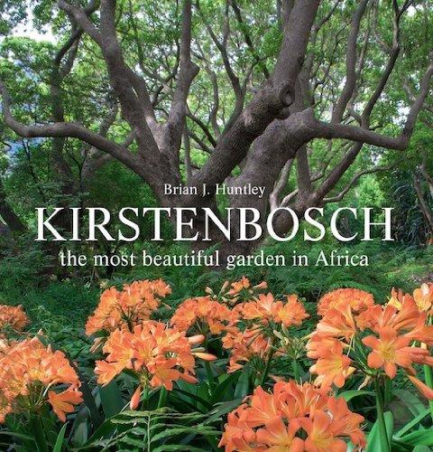 kirstenbosch-the-most-beautiful-garden-in-africa