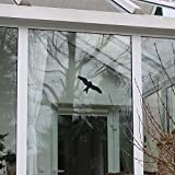 Autocollant Image d'oiseau Pour Fenêtre, 6 Pièces, Evite les Collisions, Haute...