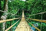 Landschaften - Dschungel Hängebrücke - Jungle Bridge - Poster Druck - Größe 91,5x61 cm + 1 Ü-Poster der Grösse 61x91,5cm