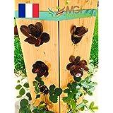 Madeinfrance Vertikaler Gemüsegarten aus Holz, hergestellt in Frankreich, Naturholz,praktischer als ein quadratischer Gemüsegarten