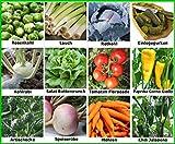 Traumgarten2014 Gemüse Set 1: Mix Tomate Paprika Chili Lauch Einlegegurken Kohlrabi Artischocken Speiserübe Salat Samen Saatgut