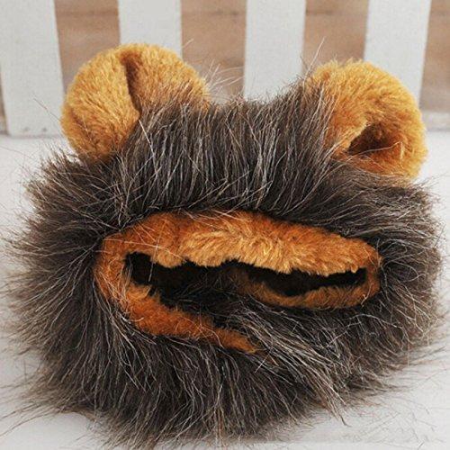 Mähne Perücke für kleines Hund und Katze Halloween Party Kleidung Kostüm (Kaffee) ()