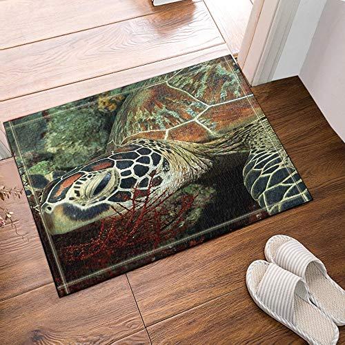 Schildkröte Grün Wolle (fdswdfg221 Salbei Grün Schildkröten Mehltau resistent Meer Badezimmer 60x40cm Flanell rutschfeste Bodenmatte Badteppich Fußmatte Badezimmer Teppich mit Mustern)