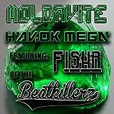 Moldavite (feat. Fishr) (Original Mix)