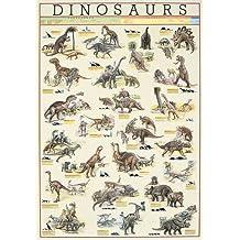 Empire 536525 Educational - Póster educativo sobre dinosaurios (en inglés, 68 x 98 cm)