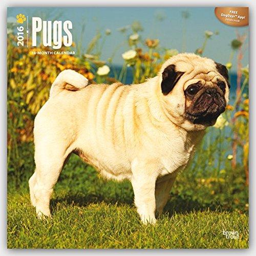 Pugs por Browntrout Publishers
