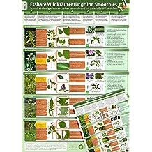Essbare Wildkräuter für Grüne Smoothies - Erkennungskarte Teil 2 (2017) - Schnell eindeutig erkennen, selber sammeln und mit gutem Gefühl genießen ... selber sammeln und mit gutem Gefühl genießen)