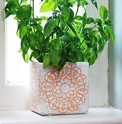 Soho Cube Vibrant Orange Pot à plantes en céramique