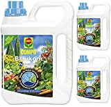 3X 2,5litri Compo Blu grano NOVATEC liquido fertilizzante universale, NPK 8+ 8+ 6
