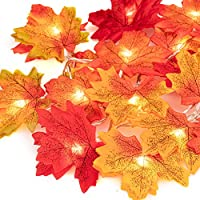 HENMI 20 LED Maple Leaf Light Chains Autumn Maple Leaf Garland for Outdoor Home Christmas Party Decoration Thanksgiving Decorations
