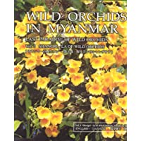 Wild Orchids in Myanmar: Last paradise of Wild Orchids: Shangri-la of Wild Orchids: 3