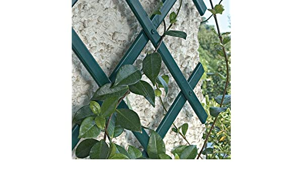 Traliccio Estensibile in Pvc colore Verde 3X1 Mt tipo rinforzato