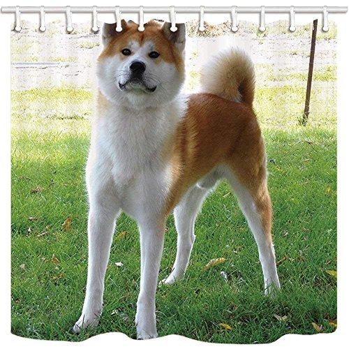 CDHBH Pet-Hund Decor Vorhang für die Dusche Wasserspeier jappanese Akita auf Rasen Oder Hotel Badezimmer Polyester-Schimmelresistent-Wasserdicht Duschvorhang Set mit Haken 180,3x 180,3cm