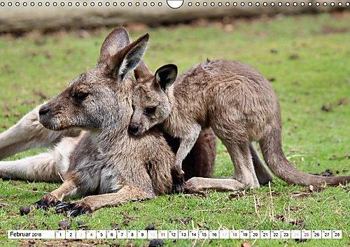 Faszination Down Under (Wandkalender 2018 DIN A3 quer): Erleben sie die natürliche Faszination des roten Kontinents Australien (Monatskalender, 14 ... Orte) [Kalender] [Apr 01, 2017] Fietzek, Anke - Bild 13