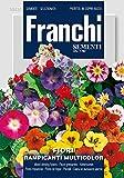 Kletterblumen Rampicanti Multicolor von Franchi Sementi [MHD 12/2018]