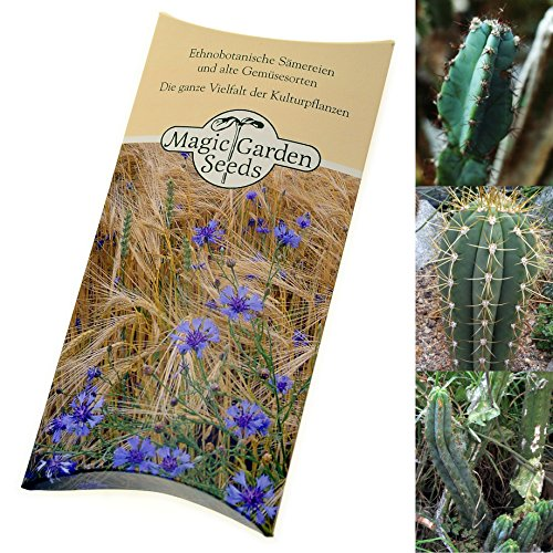 seed-kit-san-pedro-cactus-varieties-3-mythical-san-pedro-cacti-of-the-trichocereus-species