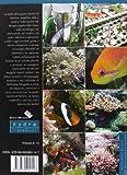 Image de ABC dell'acquario marino di barriera