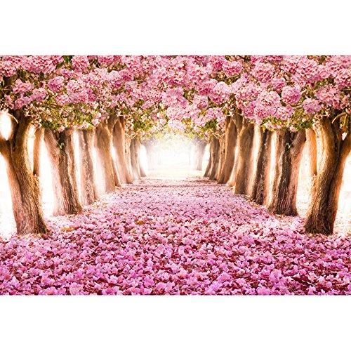 Rosa Cherry Blossom Hintergründe Fotografie Petals Road Bäume Prinzessin Baby Mädchen Geburtstag Party Foto Booth Hintergrund 7x 150 (Cherry Blossom Prinzessin)