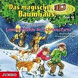 Lawinenhunde im Schneesturm (Das magische Baumhaus 44)