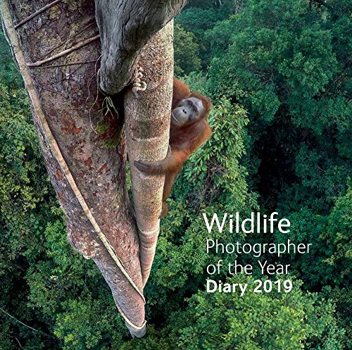 Wildlife Photographer of the Year 2019 Desk Diary par  Natural History Museum