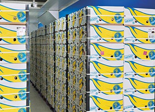 Bananen Chiquita beste Qualität 18 kg Orginalkarton SUPERPREIS