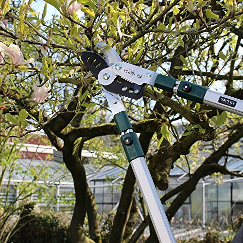 Siena Garden Pro Alu Bypass Astschere, teleskopierbar