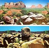 Fotorückwand 200x60 cm Reptilen Wüste Rückwand Rückwandfolie 200 60 Poster