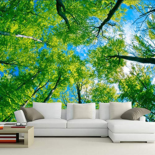jtxqe 3D-Digitaldruck Polyester Tapisserie Tausende von Farben 11 W150cm * L130cm
