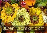 Blüten dicht an dicht (Wandkalender 2019 DIN A2 quer): Ein kunterbunter blumiger Augenschmaus (Geburtstagskalender, 14 Seiten ) (CALVENDO Natur)
