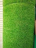 Best Indoor Mats - Artifical Soft Grass Door mat 2 * 1.5 Review