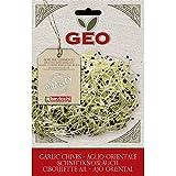 Geo Ajo Oriental - Semillas para germinar, 12.7 x 0.7 x 20 cm, color marrón