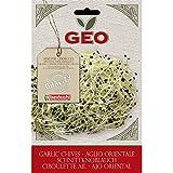 Geo ZAG0503 Keimsaaten Schnittknoblauch, braun