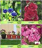 Pinkdose Blumensamen: Pflanze Luftreiniger Pflanzensamen Combo Lotus Samen, Hollyhock, Dahlien-Bambino, Statica Garten Blumensamen Pack Von Creativefarm