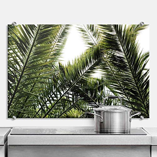 Spritzschutz Dattelpalme Küche Küchenrückwand Natur Fotografie Baum Wald grün tropisch Blätter Dornen Licht mit Klemmhalterungen Wall-Art - 80x60 cm - Licht Grüne Bäume