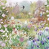 %2F Blanko Grußkarte / Geburtstagskarte, Motiv: Gartenschuppen (PLK3181)