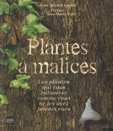 Plantes à malices : Les plantes qui vous entourent comme vous ne les avez jamais vues