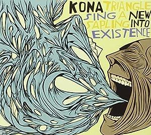 Kona Triangle