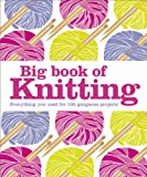 Big Book of Knitting: Everything you need for 100 gorgeous projects (Dk Crafts)