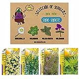 Selección semillas de plantas aromáticas medicinales