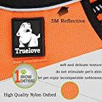 fiE FIT INTO EVERYWAY Range Of Front Side No Pull Dog Harness Outdoor Adventure 3M Reflective Pet Vest with Handle… 12