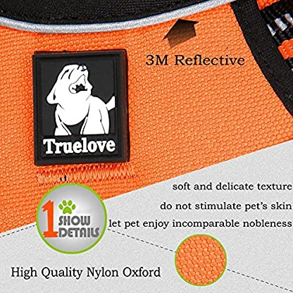 fiE FIT INTO EVERYWAY Range Of Front Side No Pull Dog Harness Outdoor Adventure 3M Reflective Pet Vest with Handle… 4