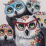 CCMANOR Original Handgemalte Leinwand,Abstrakte Mode Moderne Eulen Künstler Reiner Handgemalt Acryl Gemälde Öl Malerei Leinwand Bild Dekoration, 40 × 40 cm Rahmenlos