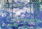 Cuadro sobre lienzo 40 x 30 cm: Water Lilies de Claude Monet - cuadro terminado, cuadro sobre bastidor, lámina terminada sobre lienzo auténtico, impresión en lienzo