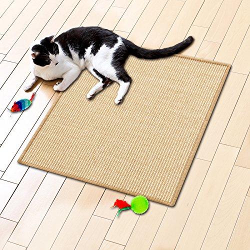 katzeninfo24.de Floori® Sisal Kratzteppich | Naturfaser: nachhaltig und umweltfreundlich | Kratzmatte für die Krallenpflege Ihrer Katze | Natur, 50x50cm