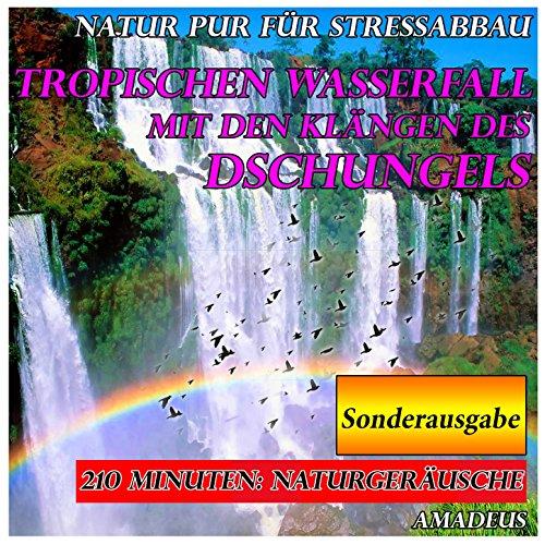 Natur pur für Stressabbau: tropischen Wasserfall mit den Klängen des Dschungels: Sonderausgabe (Klang-wasserfall)