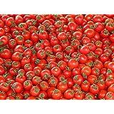 Saatgut Tomaten Auswahl hochwertige Premium Cherry Tomatensamen Samen Saatgut Pflanzen für Garten und Gewächshaus (süß & klein)