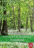 Streifzug durch die Jahreszeiten im Havelland (Tischkalender 2019 DIN A5 hoch): Landschaften entlang der Havel (Planer,