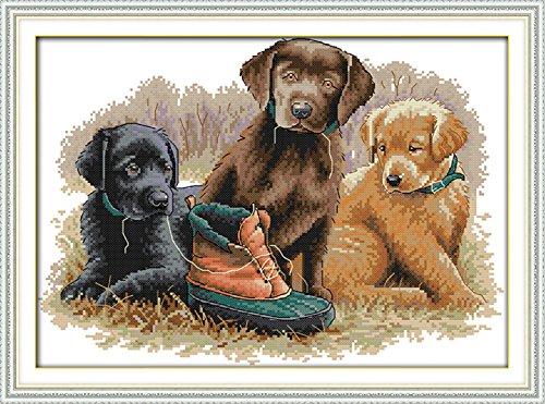 stich Stickpackung - Drei Welpen Hund und Schuhe 14 CT 42×31 cm DIY Stickerei Set Weiß Segeltuch - Kreuz Nähen Handarbeit Weihnachten Geschenke Cross Stitch Kit (Zombie-vans Schuhe)