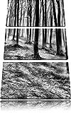 Monocrome, Düstere Landschaft schwarz weiß 3-Teiler Leinwandbild 120x80 Bild auf Leinwand, XXL riesige Bilder fertig gerahmt mit Keilrahmen, Kunstdruck auf Wandbild mit Rahmen, gänstiger als Gemälde oder Ölbild, kein Poster oder Plakat