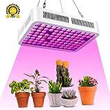 600W Lampade per Piante, Roleadro Led Grow Light Luce Coltivazione indoor Lampada da coltivazione per Semina Crescita fioritura e fruttificazione